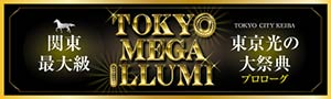 TOKYO MEGA ILLUMI