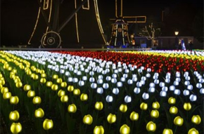 ハウステンボス「光のチューリップガーデン」総合プロデュース