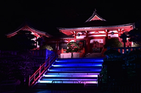 works2014_ashikaga_orihime02